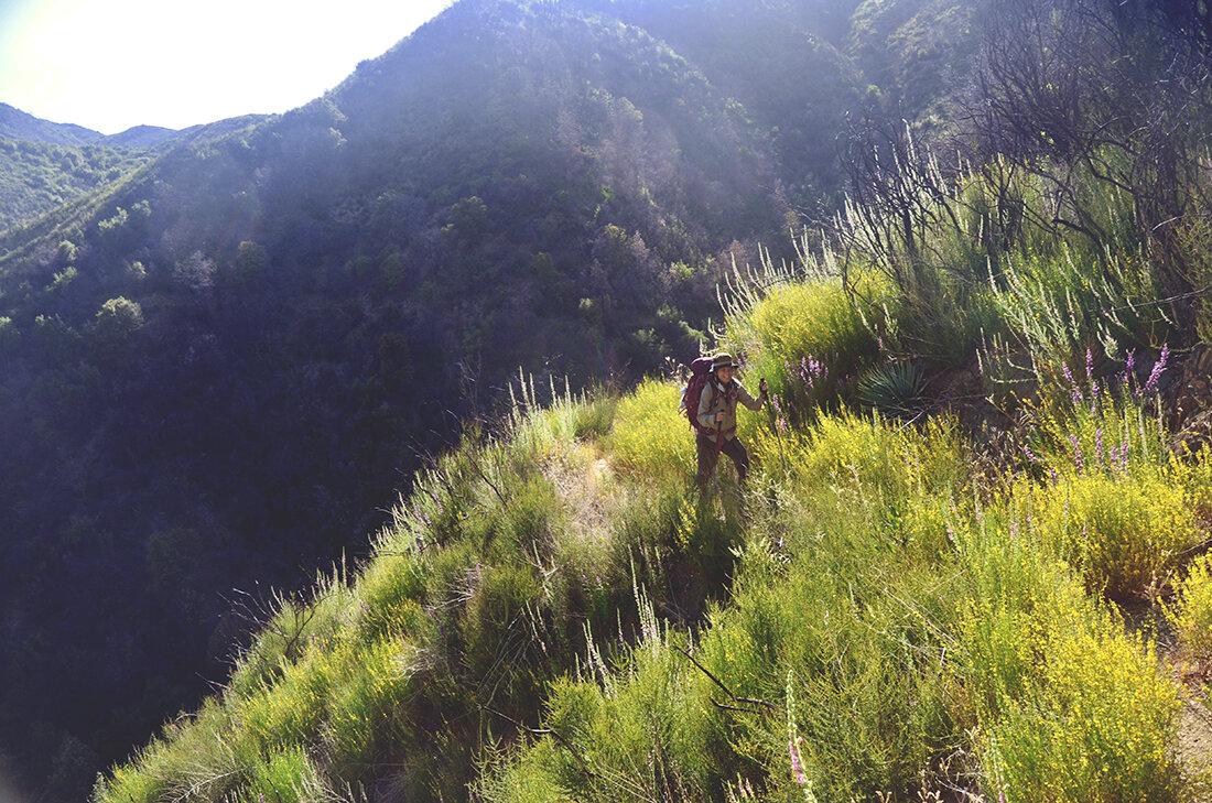 tassajara-backcountry.jpg