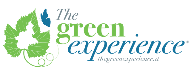 the-green-experience-logo-blu.png