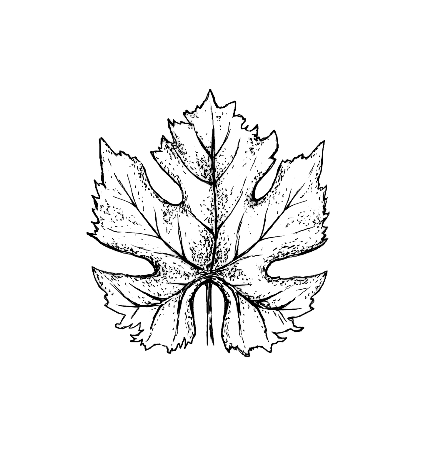 merlot-leaf.jpg