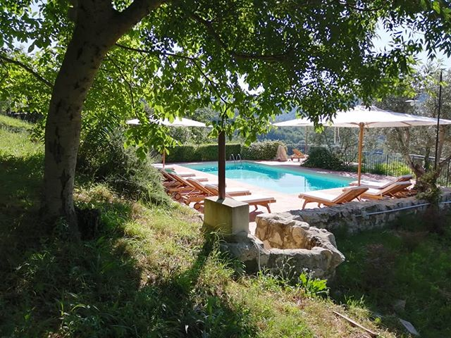 Good morning! 🌞 Have a great weekend and stay cool! 💦💦💦 . . #lemolesulfarfa #agriturismo #slowtourism #poolwithaview #visitlazio #italy #thatsummerfeeling #wondermore #embracingtheseasons #myhappyviews #escapeandwonder #slowlived