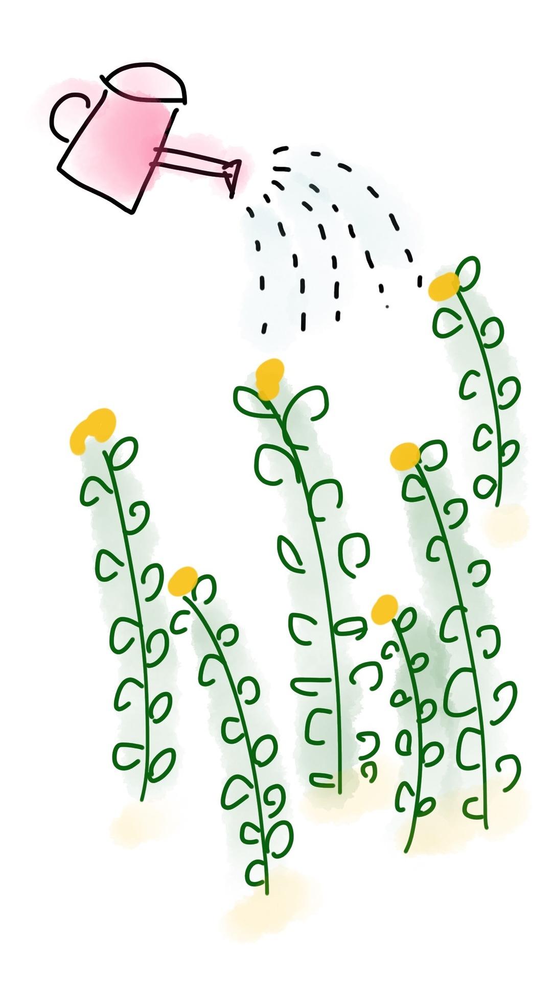 flowers-1291770_1920.jpg
