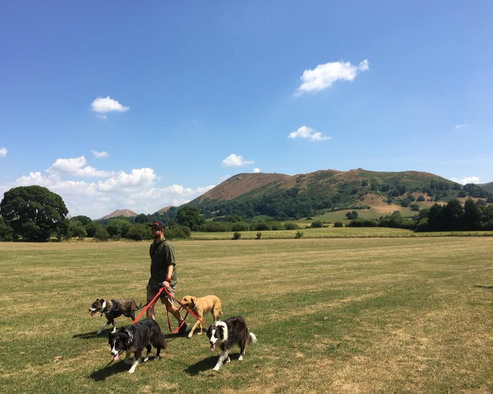 Walkies…with an amazing backdrop Photo Credit: Tom Rochester
