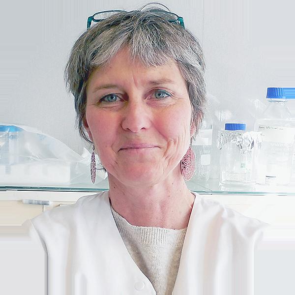 Anne Op de beeck, Ph.D.