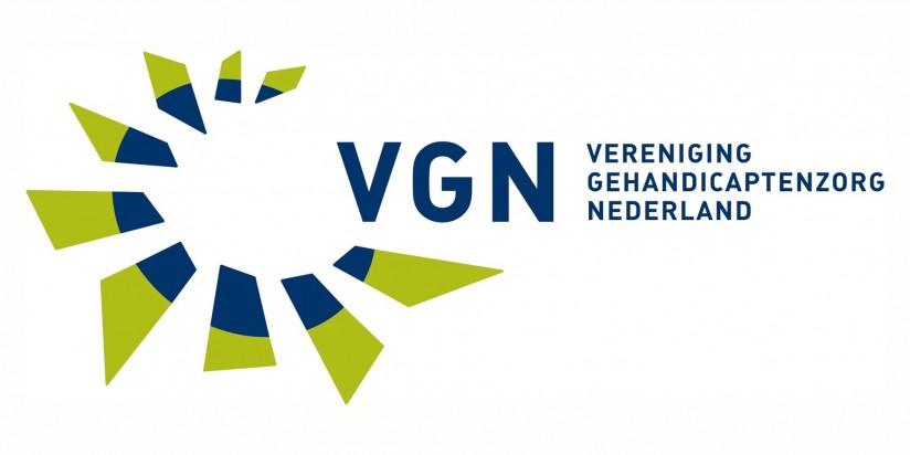 Logo VGN.jpg