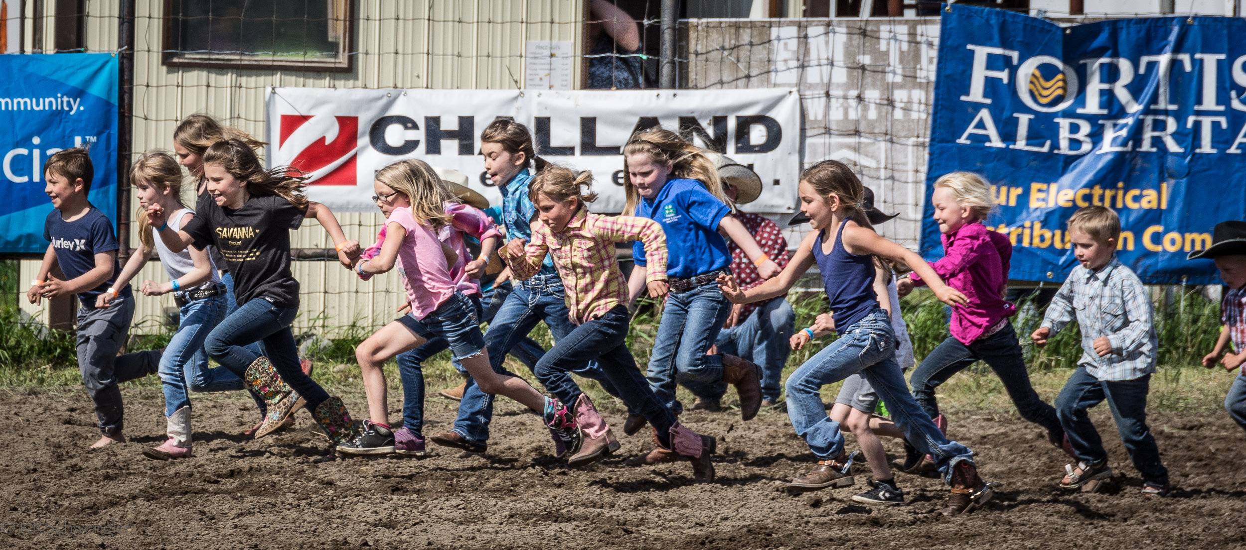 Calf Scramble 2017
