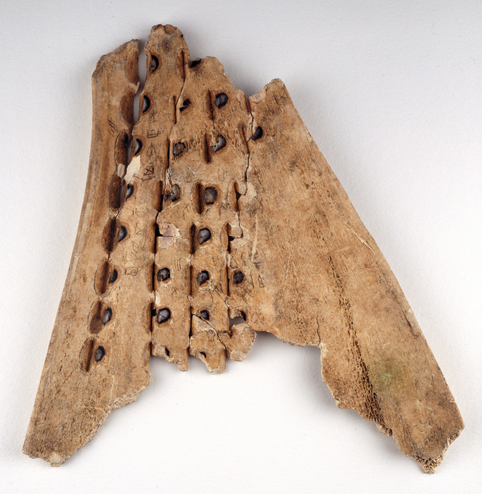 Chinese oracle bone - Diviners of the Shang dynasty (16th-10th centuries B.C.) produced oracles by reading cracks on ox bones. The pit marks were produced by a hot poker.