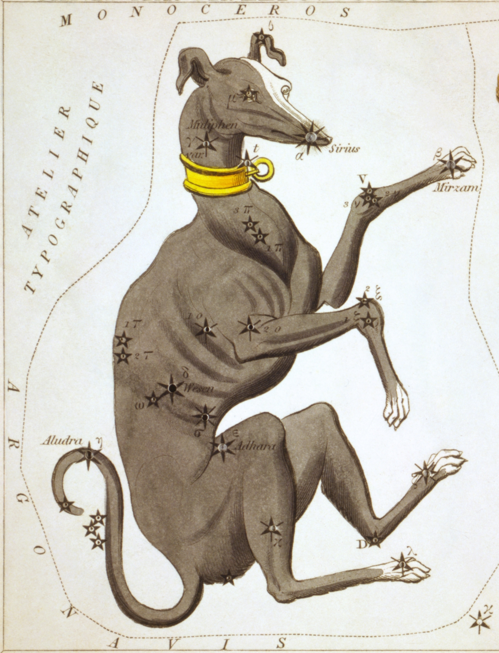 Sidney_Hall_-_Urania's_Mirror_-_Canis_Major,_Lepus,_Columba_Noachi_&_Cela_Sculptoris copy.jpg