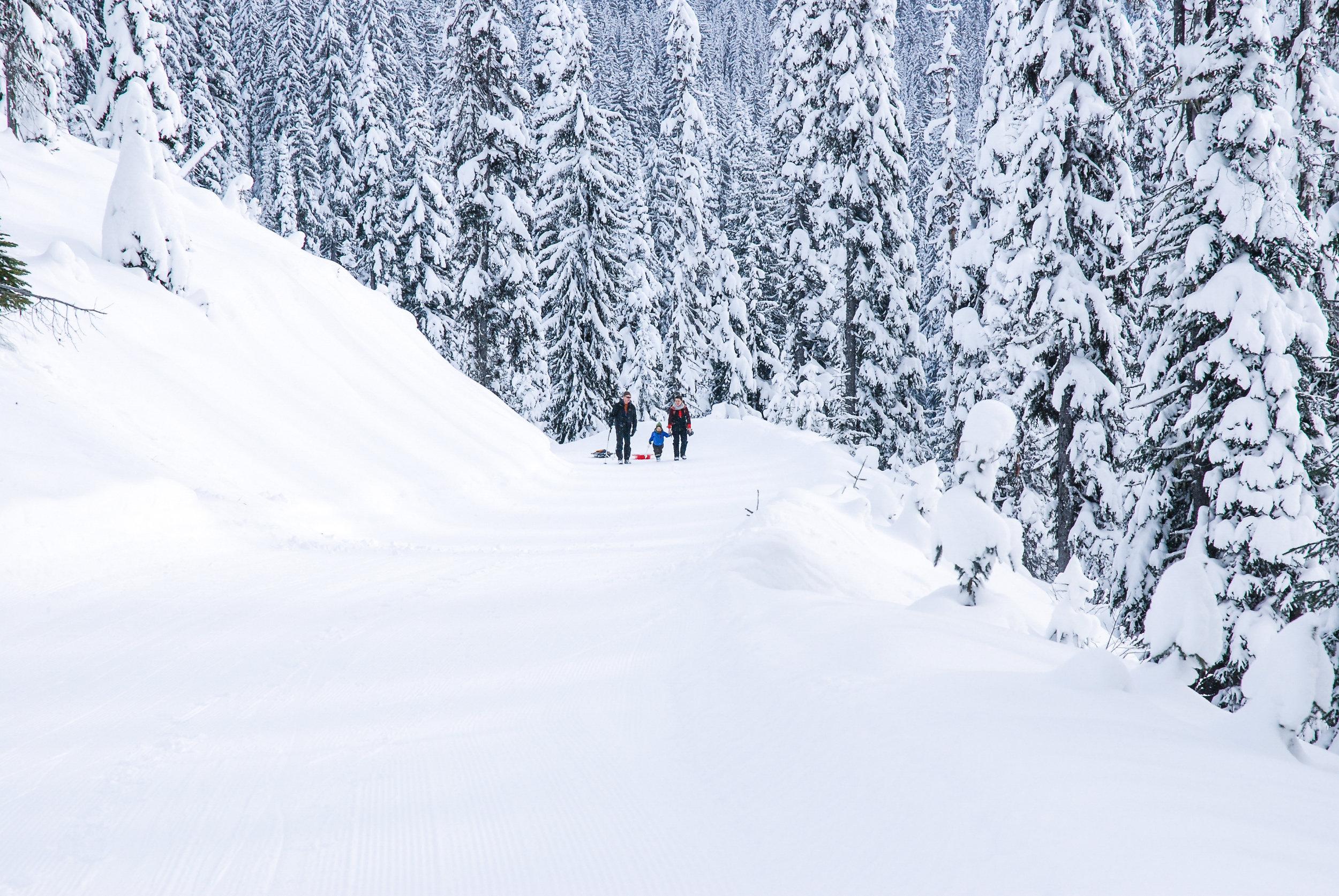 Snowshoeing Around Kootenay Huts