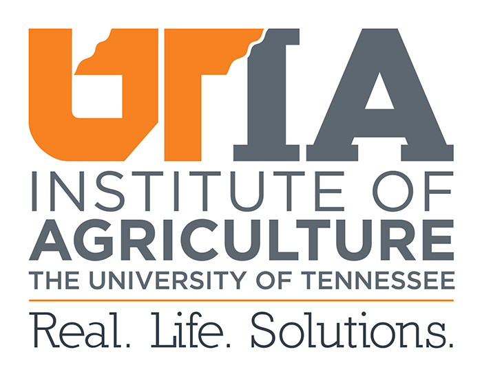 UNIVERSITY OF TENNESSEE INSTITUTE OF AGRICULTURE: SMITH INTERNATIONAL CENTER - The University of Tennessee Institute of Agriculture (UTIA) is facilitating a partnership with ASAP to provide expertise, training, and resources for broiler chicken production. With the ultimate outcome being improvements in both household income and nutrition for project participants, UTIA is also collecting data for the Tworore Inkoko Twunguke project.