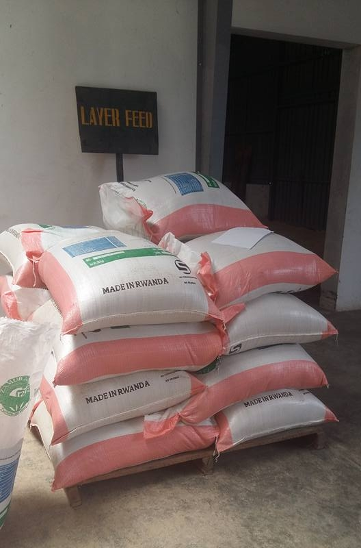 Zamura Feeds-Layer feed.jpg