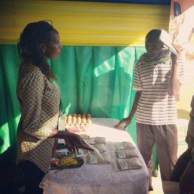 Zamura booth at the 13th National Agriculture Show. • • • #rwanda #agshow #nationalagricultureshow2018 #zamurafeeds #zamurafarms #twororeinkokotwenguke #networking #sales #livestockfeed #poultryfeed #sustainableagafrica