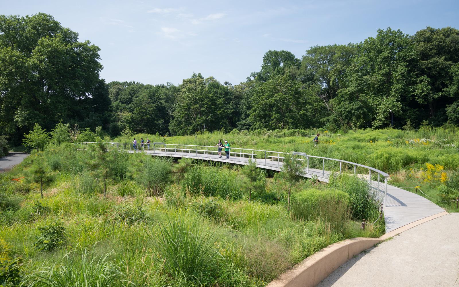 "Part of Darrel Morrison's Gardens at the BBG - North Entrance ""Pine Barrens"""