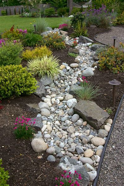 Dry Riverbed in Rain Garden