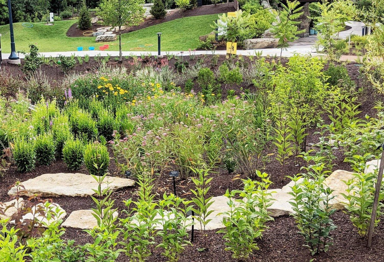 Blog Posts — ANNOTATIONS: Plants, Ideas, Knowledge on coastal garden design, urban garden design, rural garden design, rain garden design,