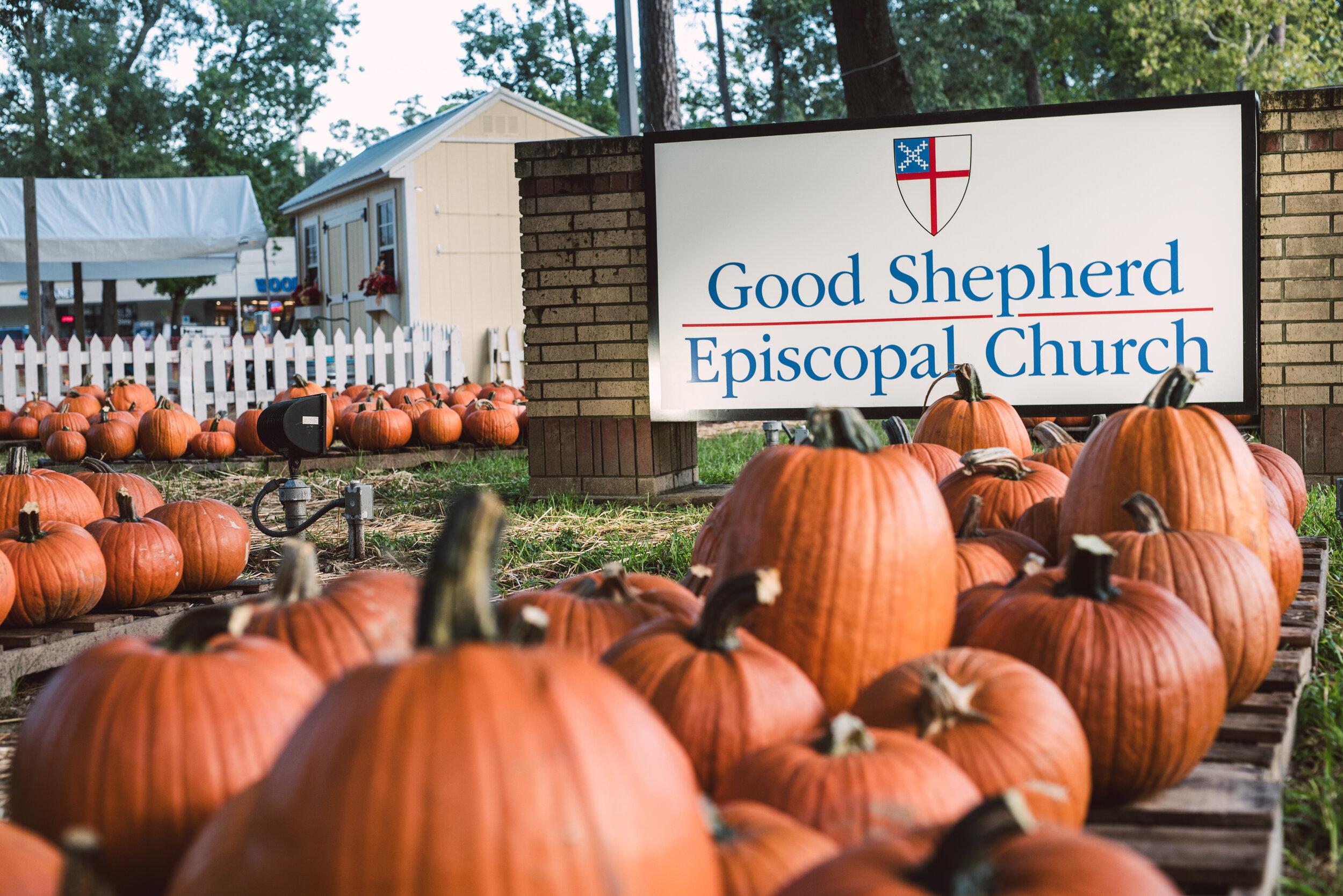 2019_Good Shepherd_Pumpkin Patch_SelectsDSC_4079.jpg