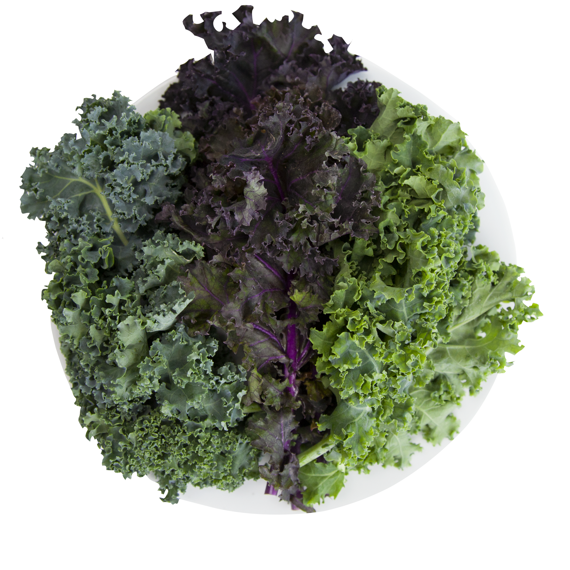 Hydroponic Kale Powered Greens.png