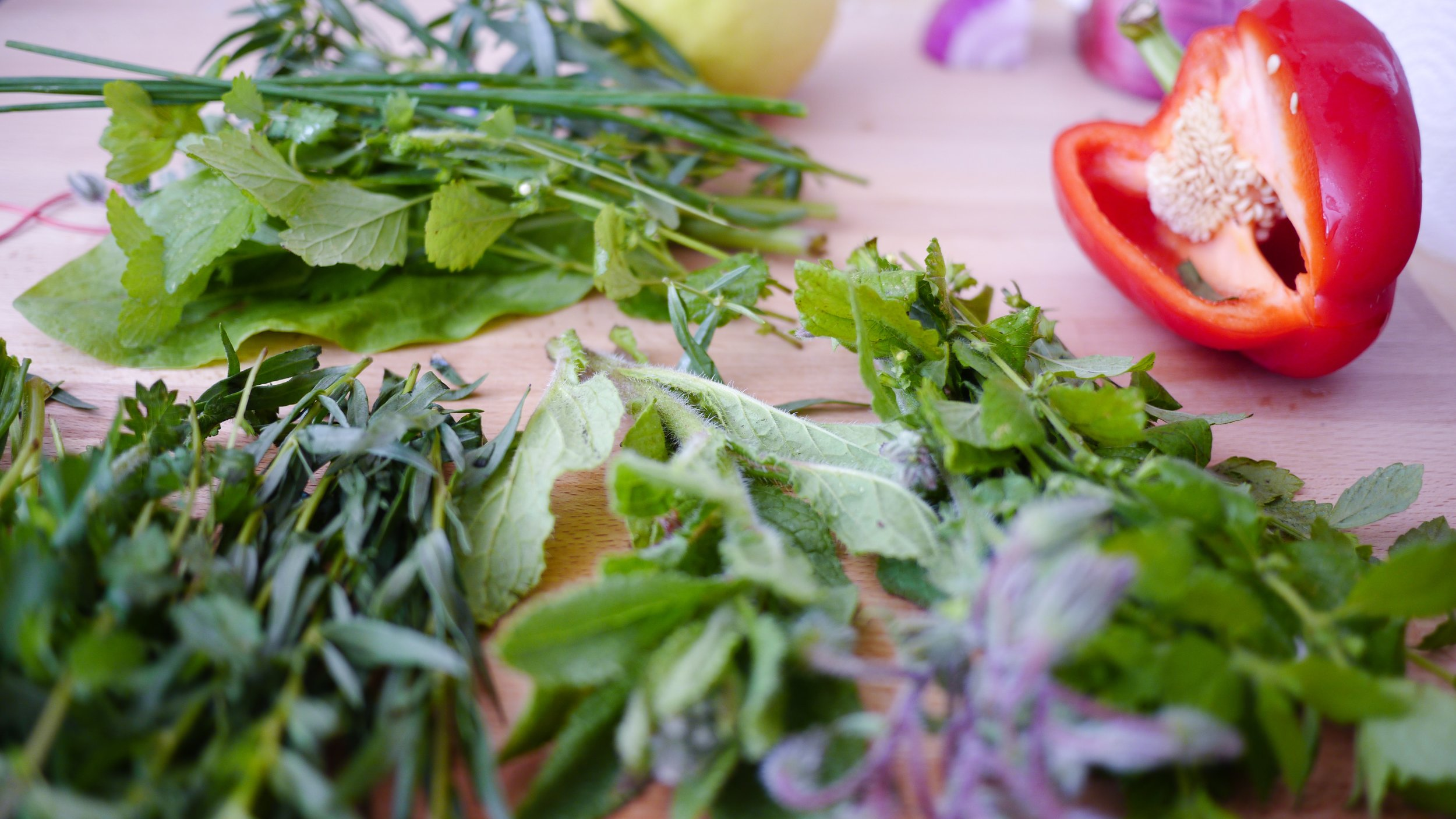 A variety of colorful, flavorful herbs for your kitchen.