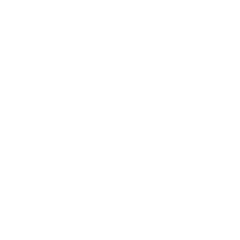 icon-texas.png
