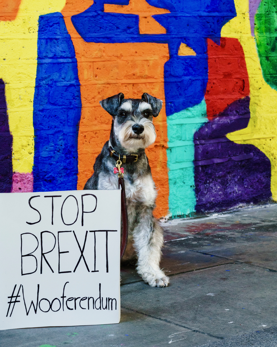 Rusty Brexit Use 4x5-3.jpg