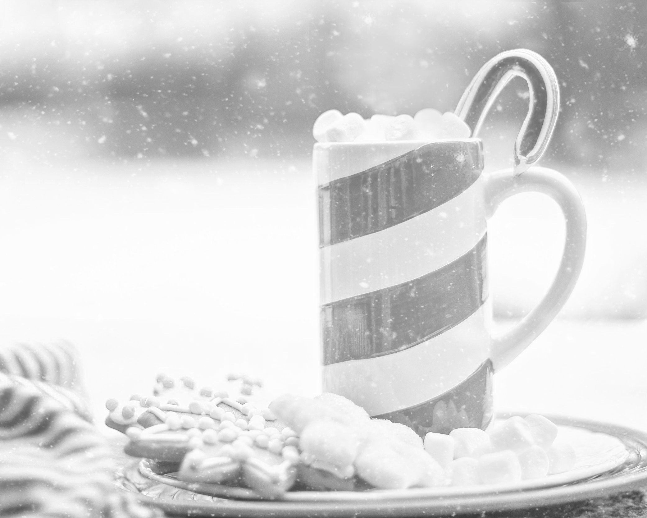 SELF-CARE DURING THE HOLIDAY SEASON - While it is always very important to recognize and appreciate happiness during the holidays, we must also take some time to be mindful of the difficulties that come for many LGBTQ folks during this time of the year.thetrevorproject.com