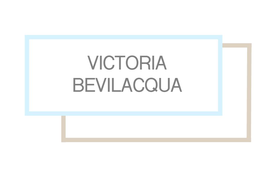 VB Logo-06.png