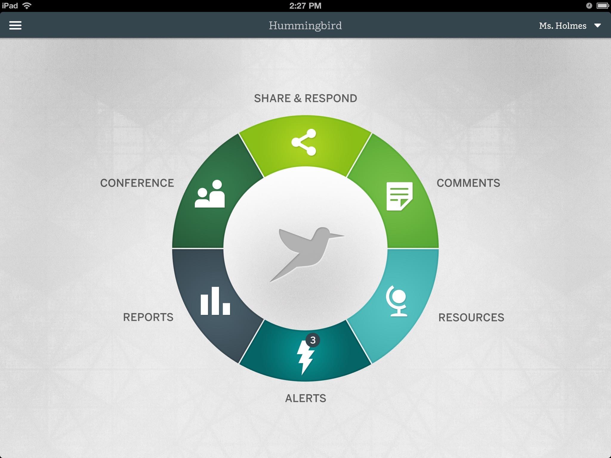 Hummingbird - 7 of 7.jpg