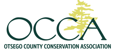 OCCA_logo_norefelection_trans-400x180.png