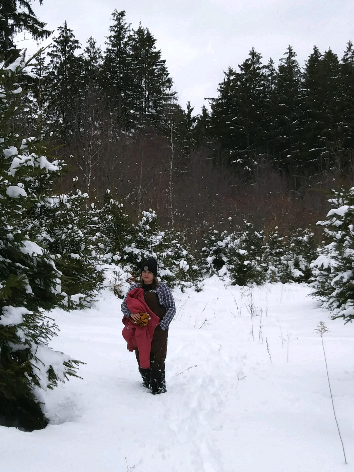 Intern Ashley Helping With Tree Inventory