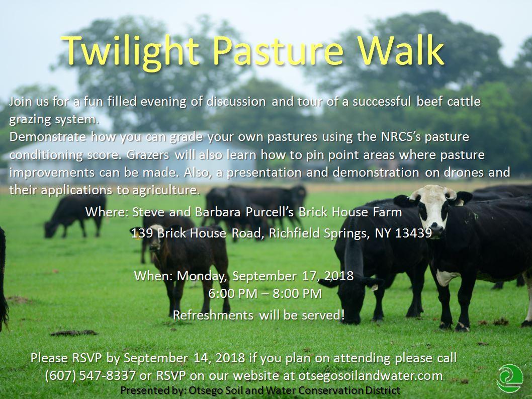 Twilight Pasture Walk.JPG