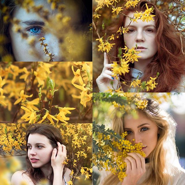 Reference vs. Reality! I've had these blossom photos in my mind for SO LONG and in any ideas folder :p and sometimes ideas become reality! There's nothing better then when a shoot comes together like this. Side note for photographers: it's easier for models to see what's in your head when you can find multiple references! @r_hains NAILED the vibe 💕💕💕💛💛💛 #references #yellow #flowers #portrait #photo #portraiture #model #blog #lifestyle #yellowflowers #reality #photographer #girls #models #student #blogging