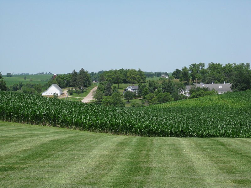 A Cornfield in Central Iowa, image taken from Wikimedia Commons. Picture taken by Christiane Tans.