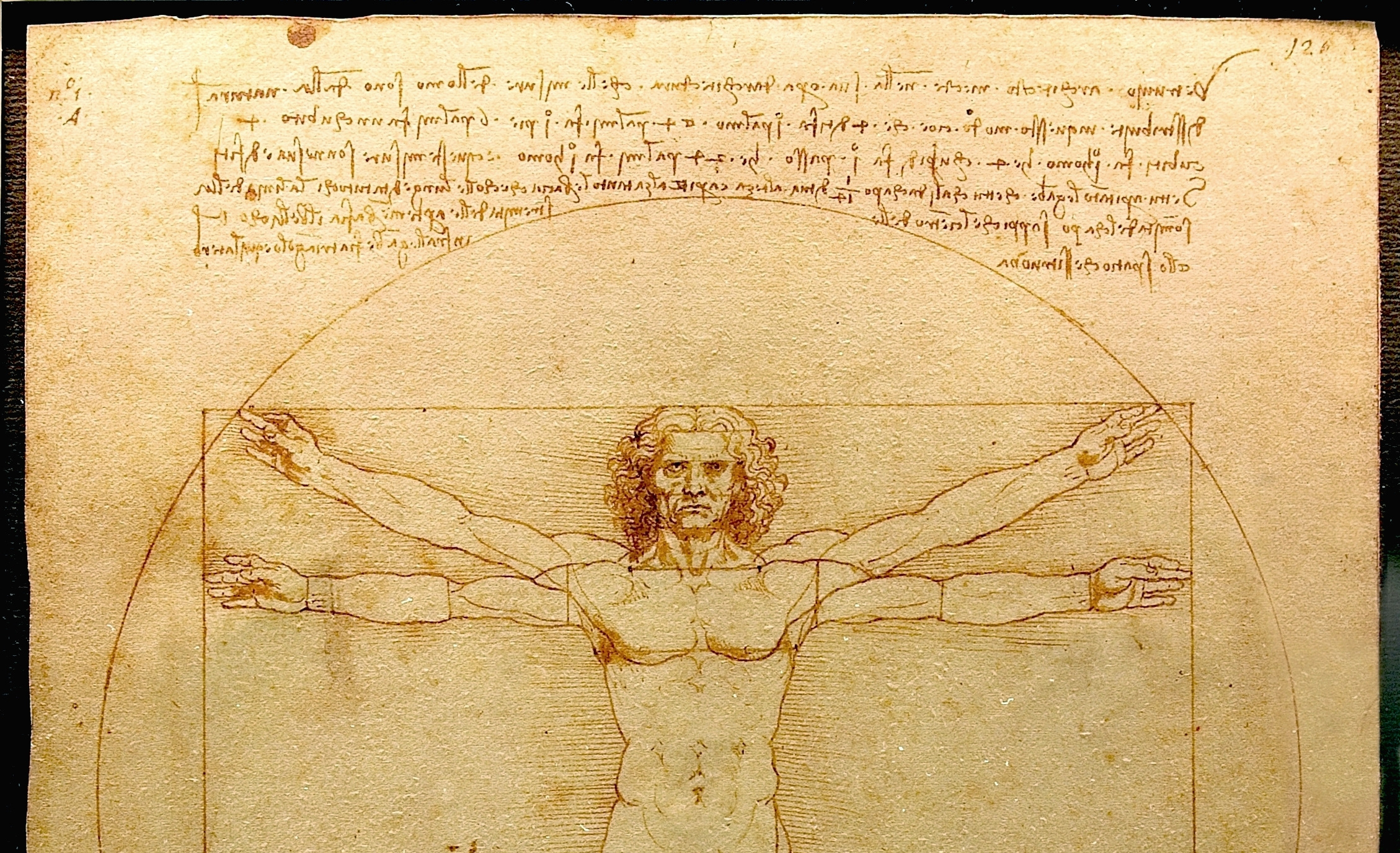 Leonardo Da Vinci's Vitruvian Man sketch (cropped so that facebook won't just show an image of a penis.)