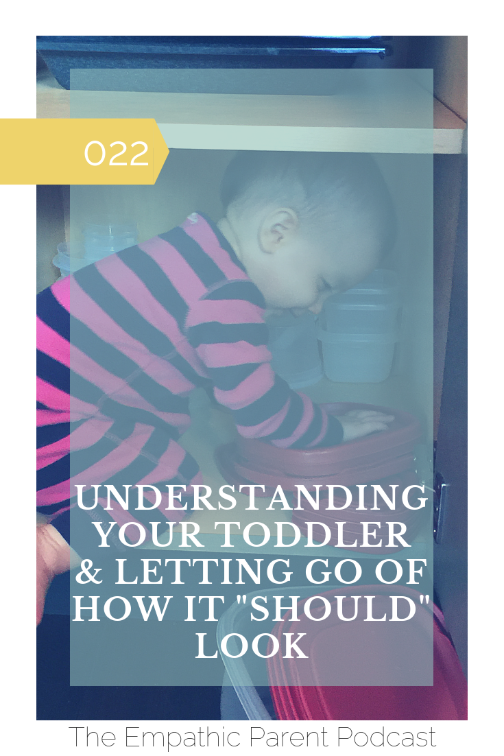 Understanding Your Toddler.png