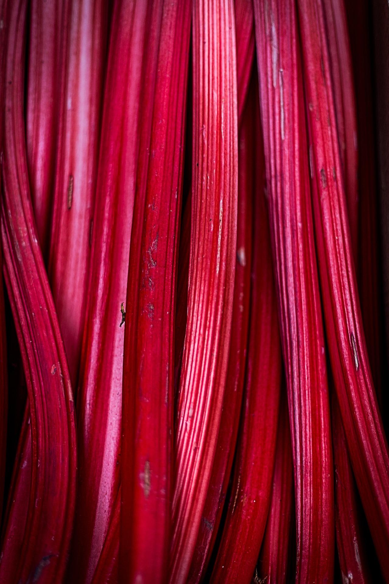 rhubarb-839618_1920.jpg