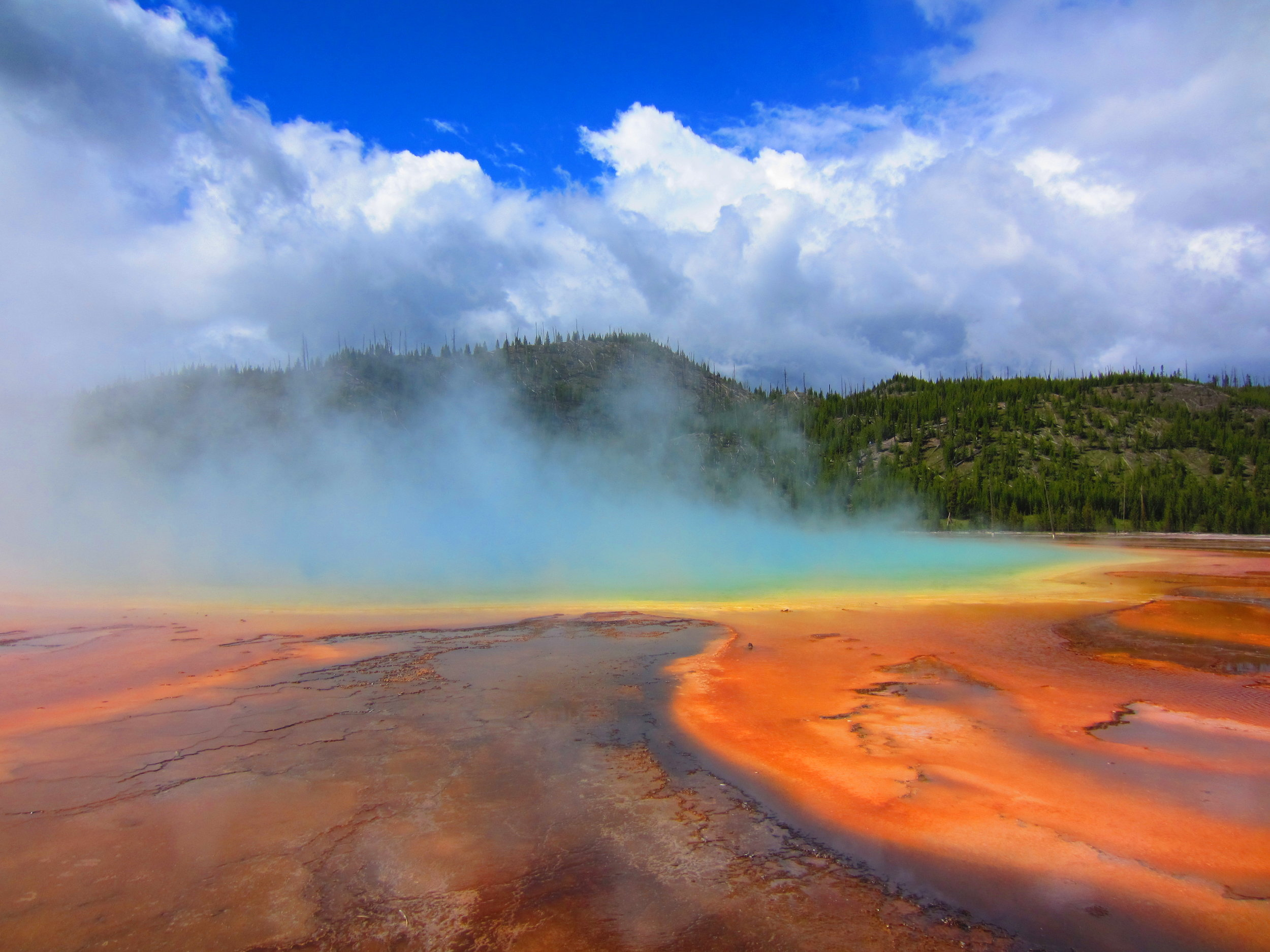 Grand Prismatic Spring, Yellowstone National Park. The vivid colors are the result of thermophilic bacteria that thrive in these otherwise hostile conditions.