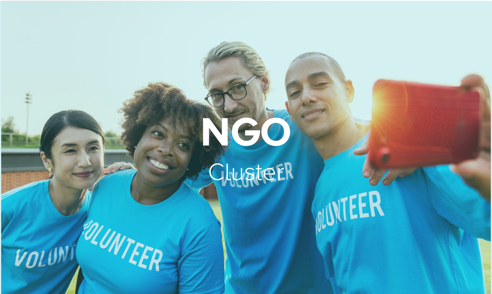 NGO.png