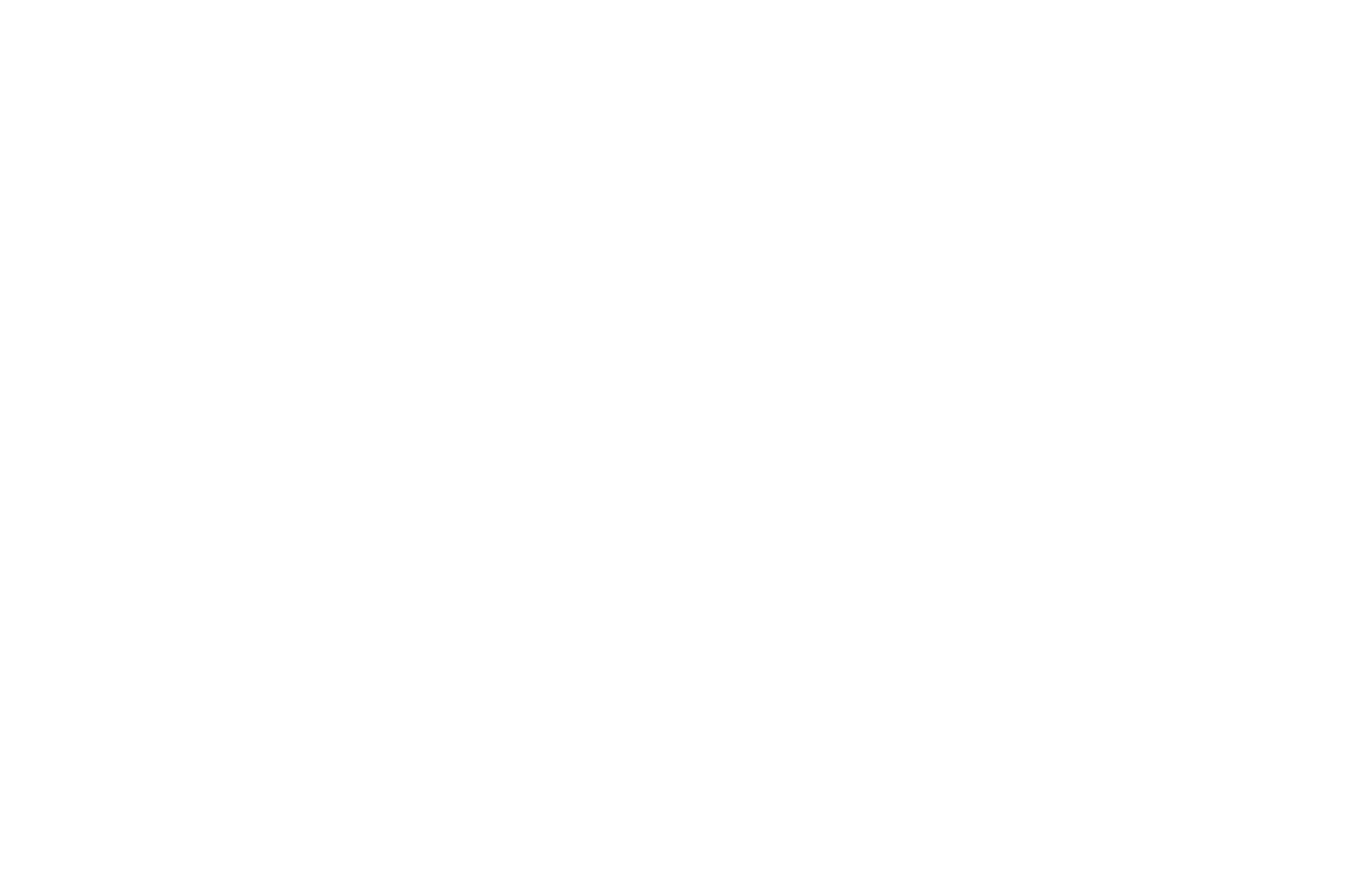 OFFICIAL SELECTION - Courage Film Festival - 2019.png