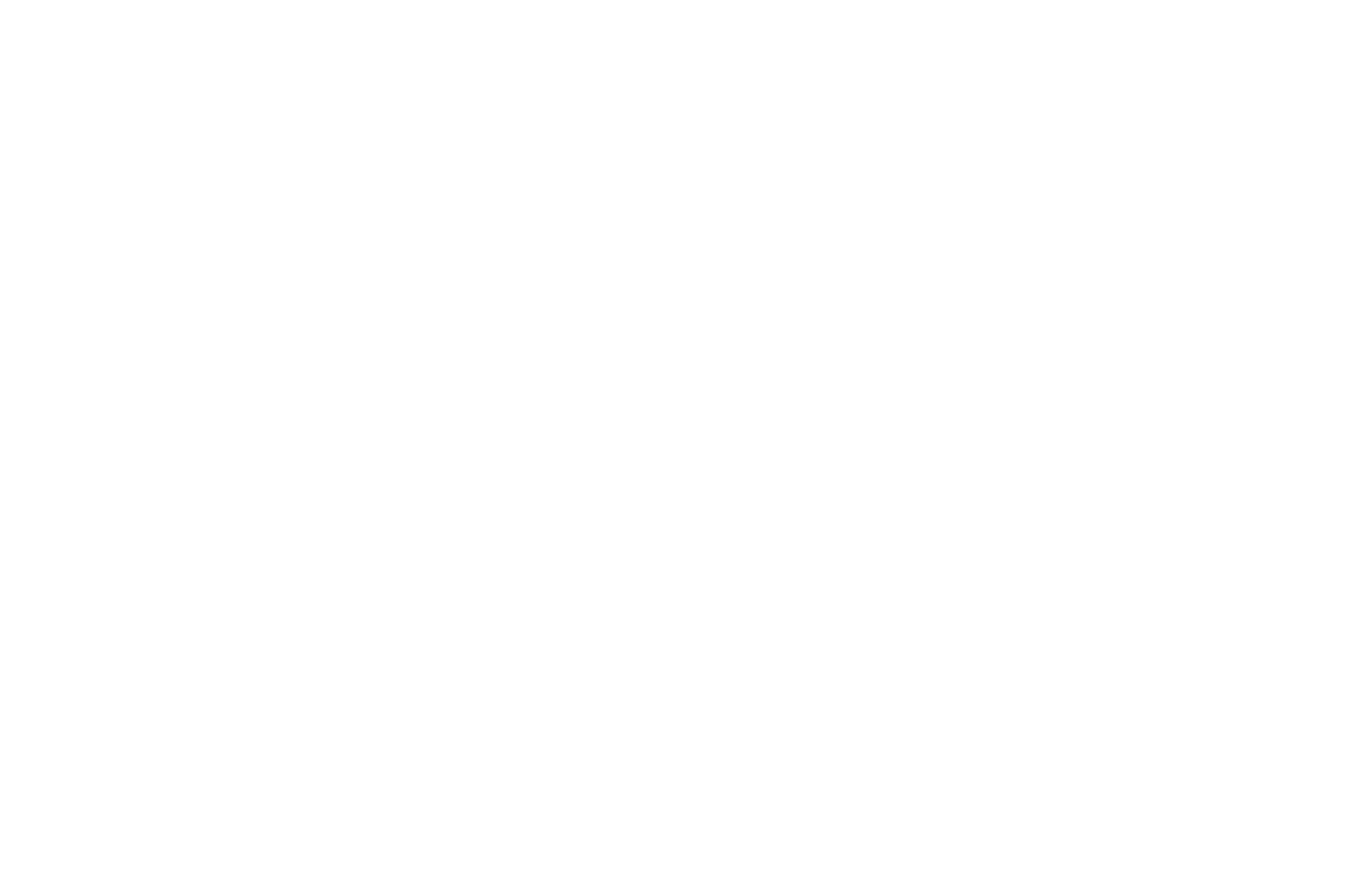 OFFICIAL SELECTION - Docs Without Borders Film Festival - 2017.png
