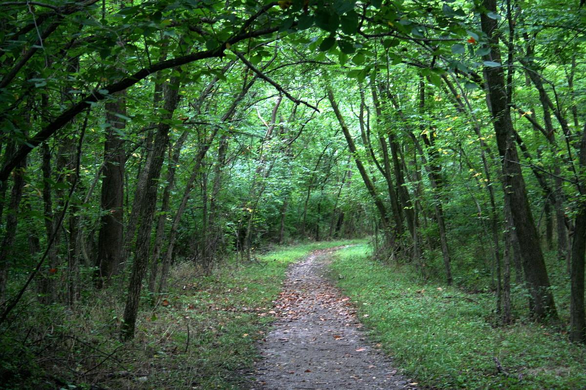 Hiking Trails -