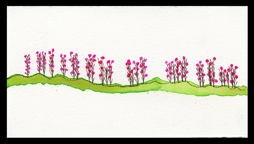 "July Fireweed, 3 x 4"", SOLD"