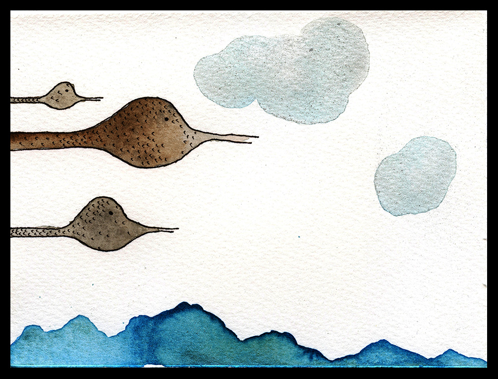 "Snow Geese, 3 x 4"", SOLD"