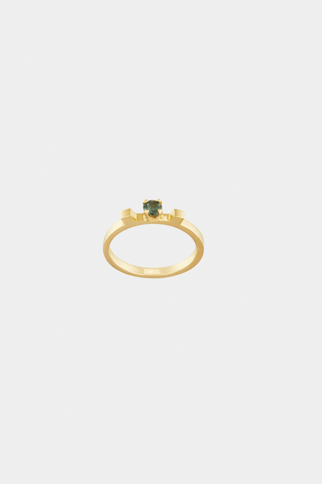 GOLD RING   Available 06.18   Click to test