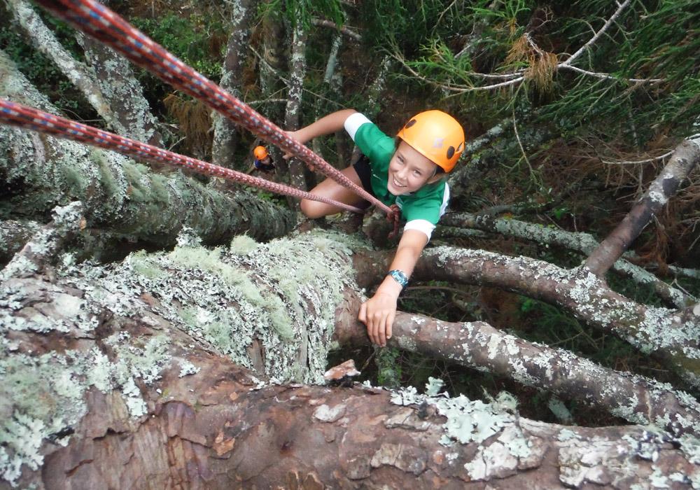 tree-climbing.jpg