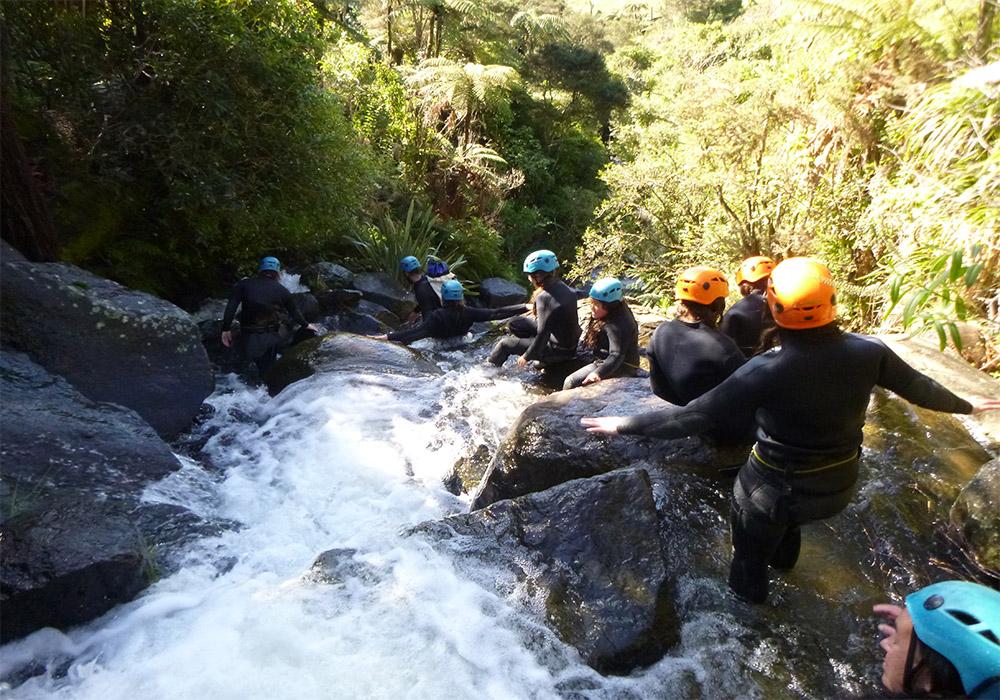 group.descending.jpg