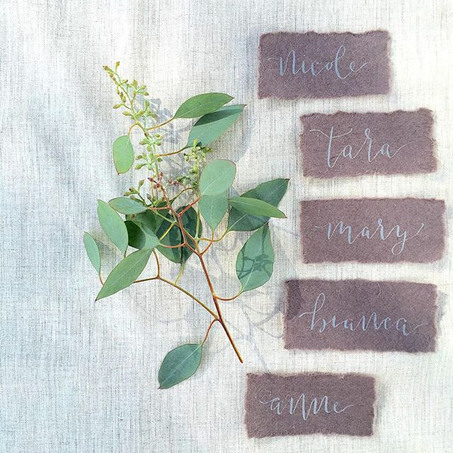 Gray on a muted mauve handmade paper = simply beautiful 🌿 Follow us and save 10% off your order using code IGFOLLOWER16 #aspensandinks #etsy #etsyseller #etsyshop #calligraphy  #coloradocalligrapher #escortcards #nametags #tabledecor #weddingideas #weddinginspiration #namecards #handmade #custom