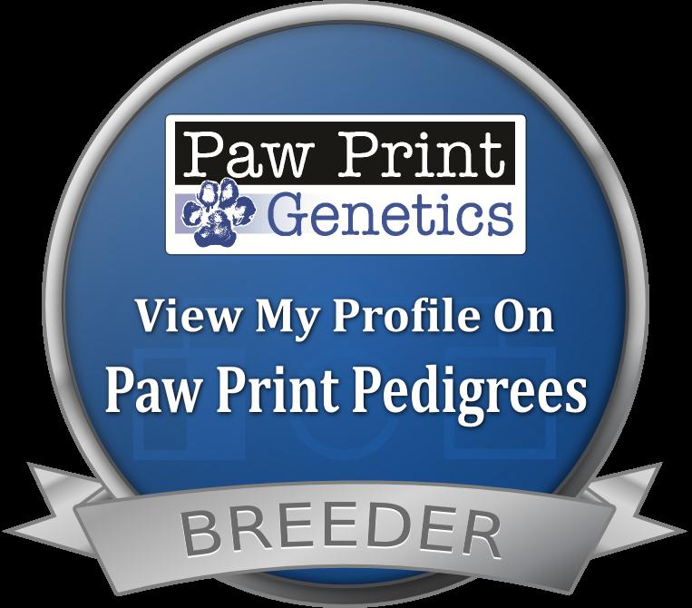 Paw Print Genetics breeder_seal.ab01261cabd3.png