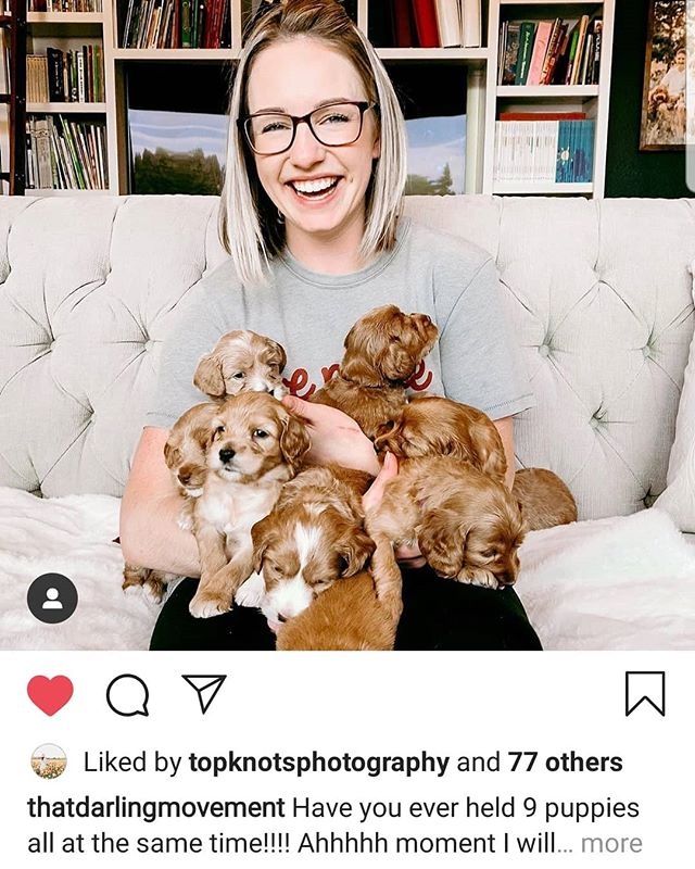 Our amazing photographer Hannah! Takes all our professional shots,  and loves getting in her puppy snuggles! @topknotsphotography . . . . . . . . . . . . . #pdxlabradoodles #puppiesforsale #puppies #labradoodlenation #labradoodlepuppies #dogsofinstagram #dogpile #labradoodlesofinstagram #puppylove #doodlelove #doodling #australianlabradoodle #miniatureaustralianlabradoodle #labradoodlesofinsta #labradoodle #puppiesofinstagram #snuggle #sustainablebreeding #healthtested #healthguarantee #nonshedding #hypoallergenic #newbornpuppies #photographer