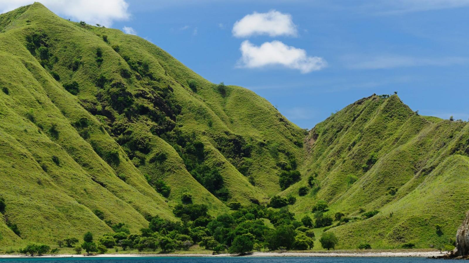 komodo-island-landscape.jpg