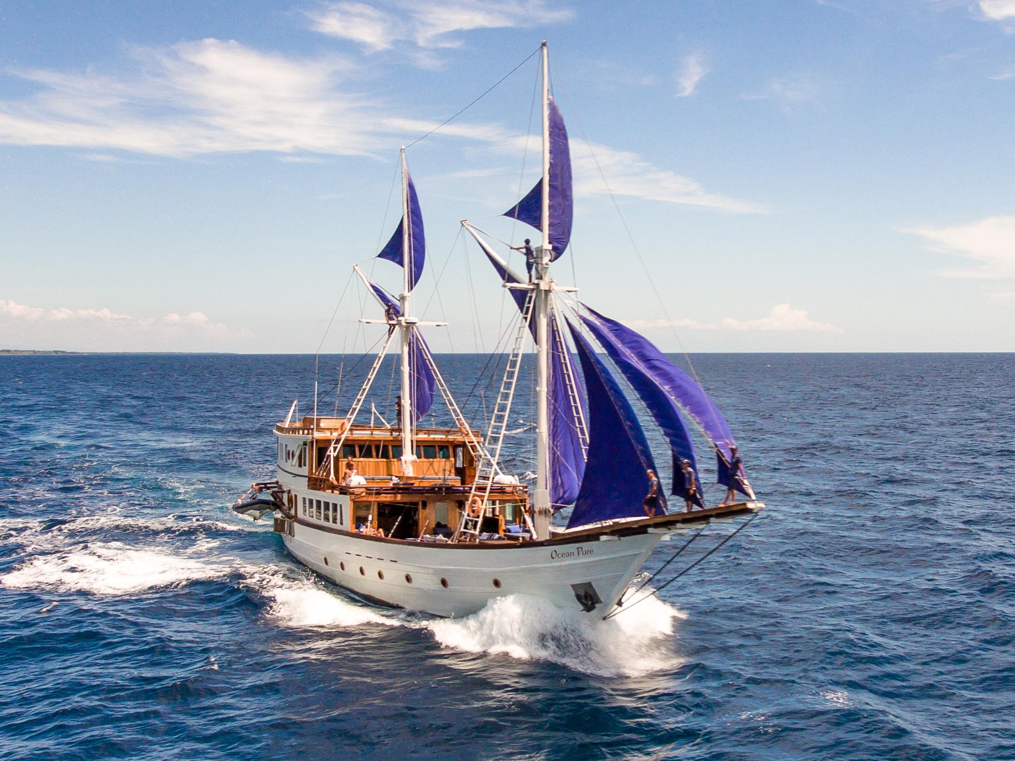 Ocean-Pure-sailing.jpg