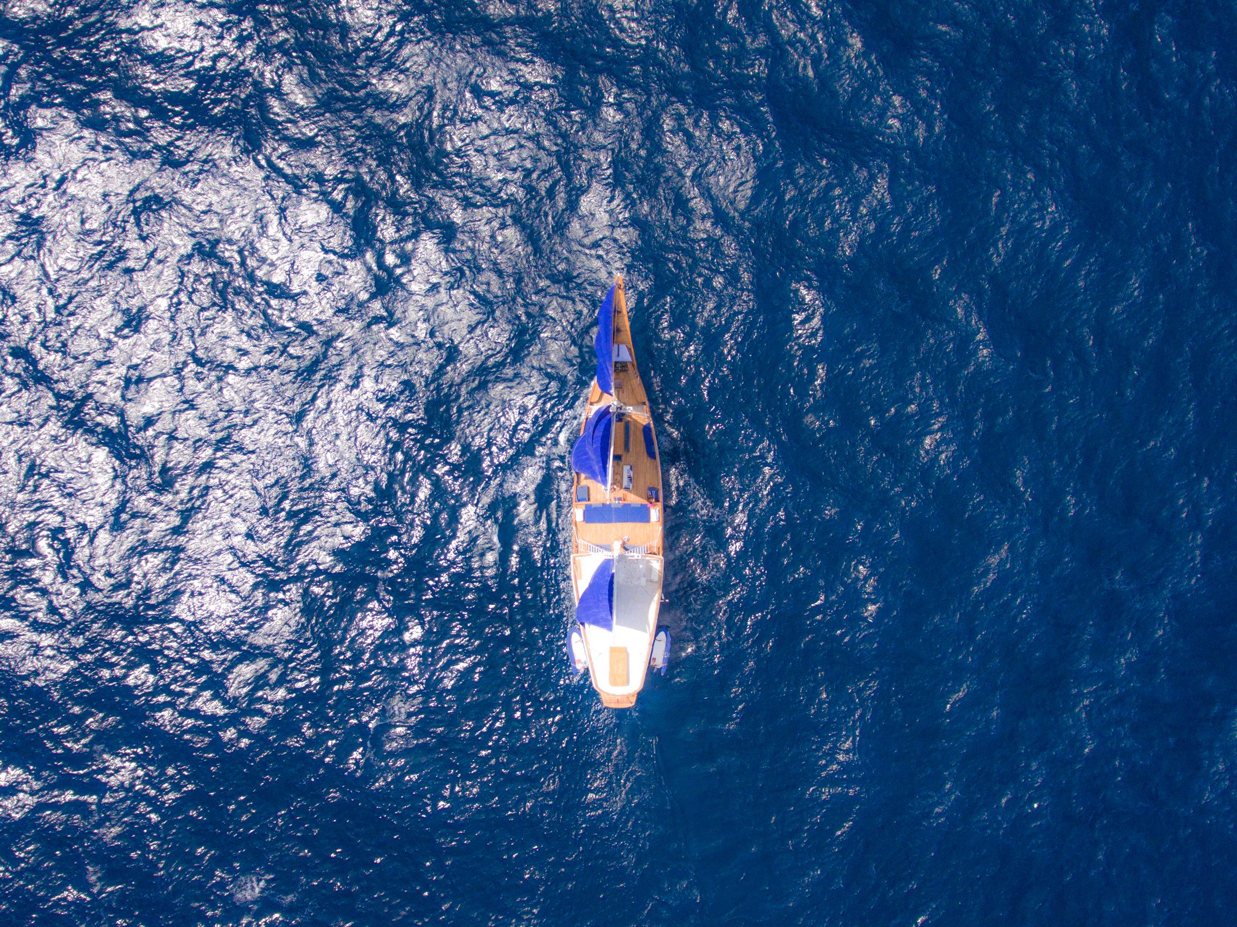 Ocean-Pure-top-sailing-view.jpg